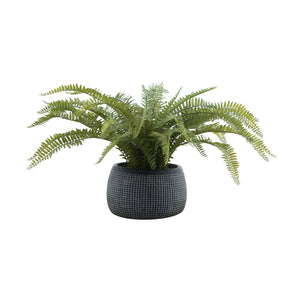 Artificial Fern Plant