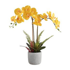 Yellow Synthetic Real Touch Orchid on White Background