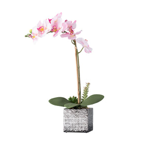 Imitative Pink Synthetic Orchid on White Background