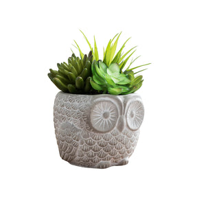 Owl Planter With Succulents