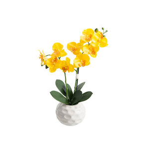 Double Stem Synthetic Orchid-Yellow