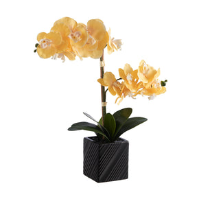 Synthetic Two Stem Orchid-Yellow