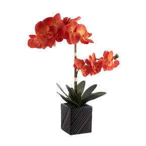 Synthetic Two Stem Orchid-Orange