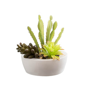 Artificial Desert Succulent Arrangement