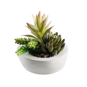Artificial Succulent Arrangement on White Background