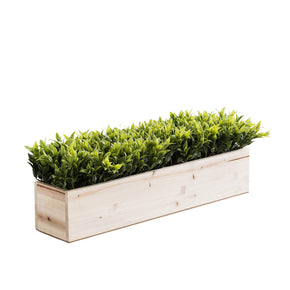 Greenery in Natural Wooden Box