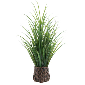 "Tall 49"" Grass In Wicker Basket on White Background"