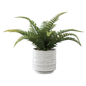 "Dynamic 11"" Fern In Ceramic Pot"