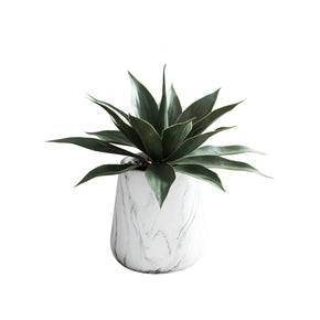 Artificial Agave in Marbled Pot on White Background