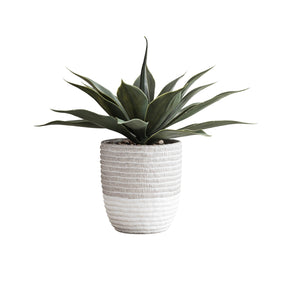 Artificial Agave in Coil Weave Pot