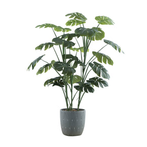 "Colossal 46"" Floor Monstera Plant"