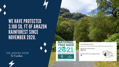 Since November 2020, we have protected 3,100 sq. ft of Amazon Rainforest through our Carbon Offset program