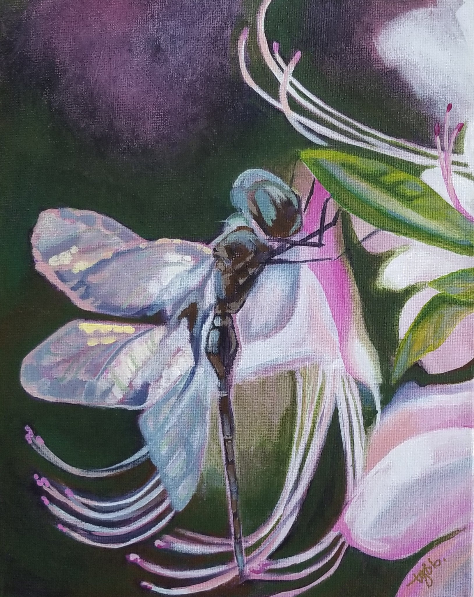 """Dragonfly II"" by Tyla Bowers"