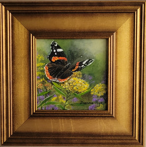 Red Admiral Butterfly by Dianna Page