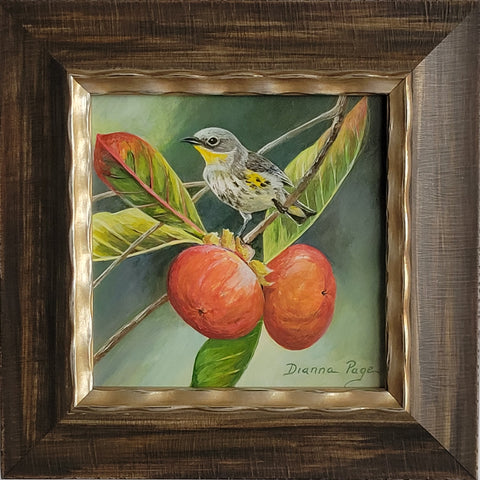 Yellow-Rumped Warbler and Persimmon by Dianna Page