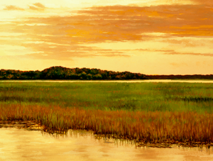 Edisto Island View by Michael Story