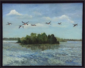 """Wings over Lake Murray"" by Faye Meetze"