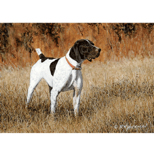 German Shorthair Pointer (2) by Robert Hickman