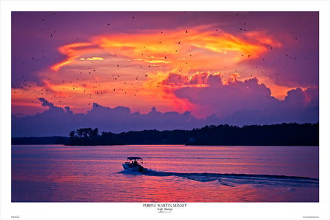 Lake Murray Purple Martin Sunset by Bill Barley