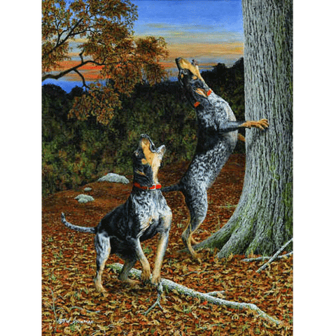 Music To My Ears - Bluetick Hounds by Robert Hickman