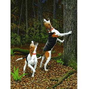 Music To My Ears - Treeing Walker by Robert Hickman