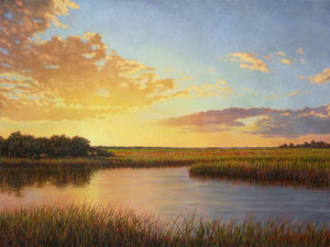 Remembering Edisto by Michael Story