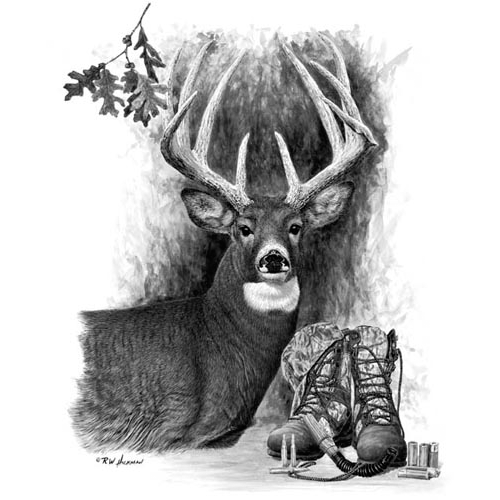 Whitetail Dreams by Robert Hickman
