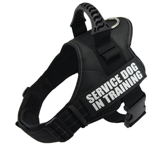 Dog Harness With Handle | Adjustable | Durable Dog Vest