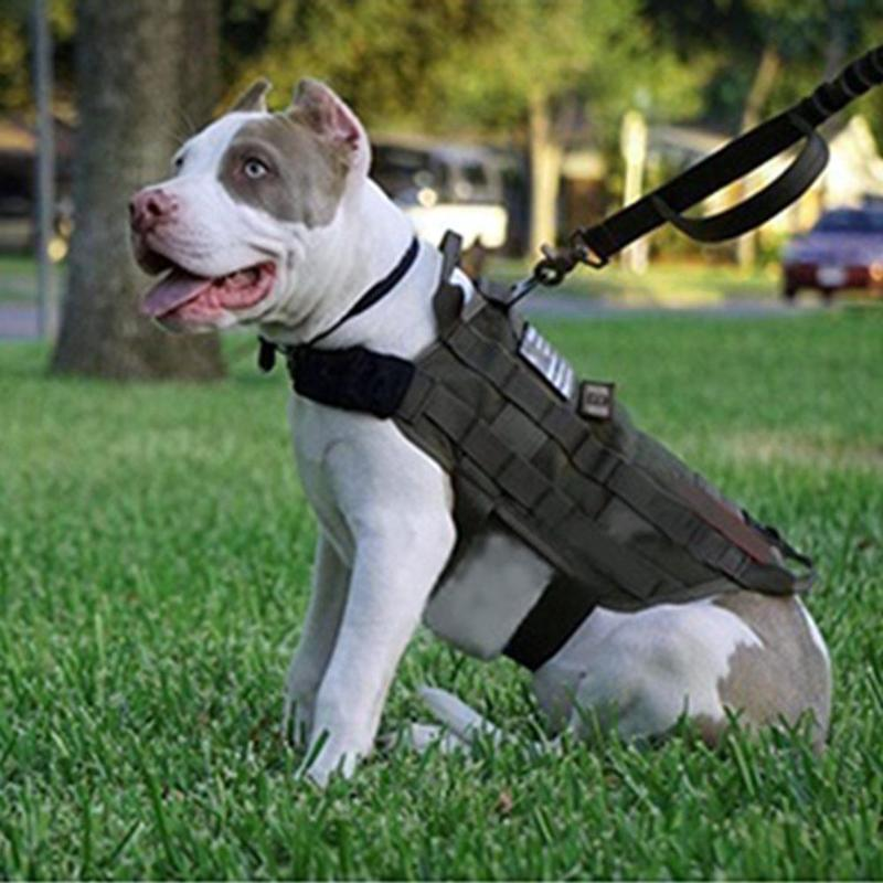 Tactical Dog Vest Harness Military Molle Army Green Harness For Small Medium Large Dogs Patrol Training Size S M L XL