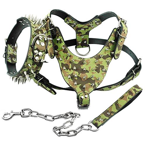 Luxury Spiked Studded Leather Dog Harness Vest | Rivets Collar and Link Chain Leash SET