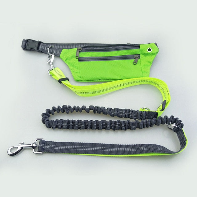 Handsfree running bungee dog leash with pouch