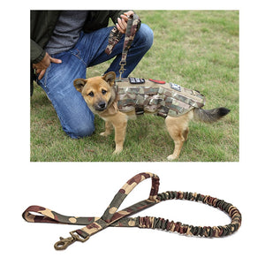 Bungee dog leash and tactical dog harness