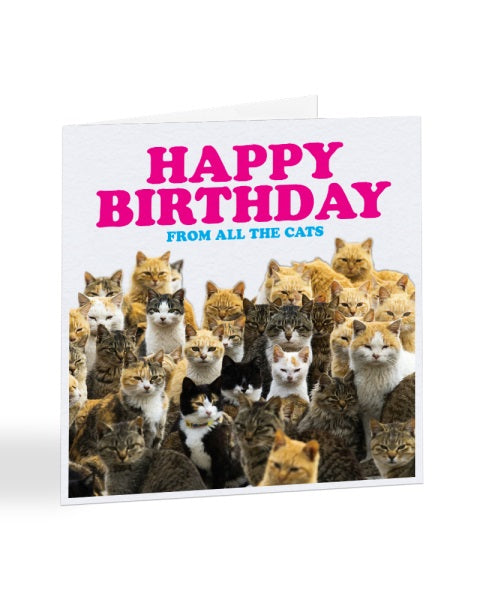 Happy Birthday From All The Cats - Birthday Greetings Card