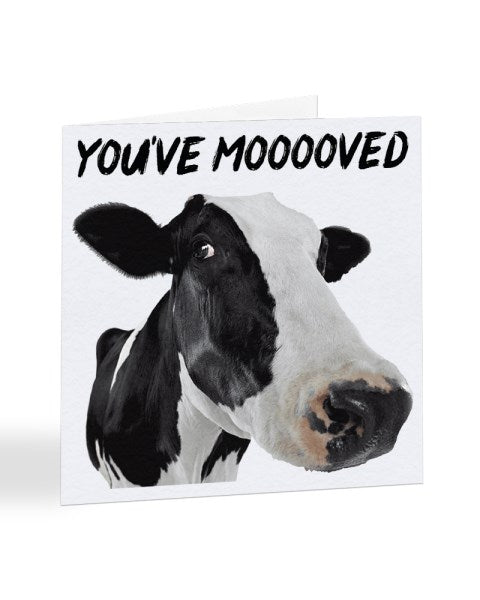 You've Mooooved - New House Greetings Card