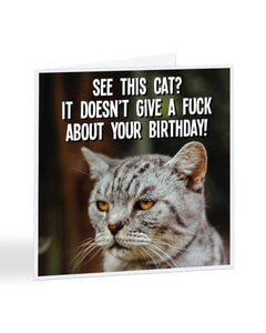 See This Cat? It Doesn't Give a Fuck About Your Birthday - Greetings Card