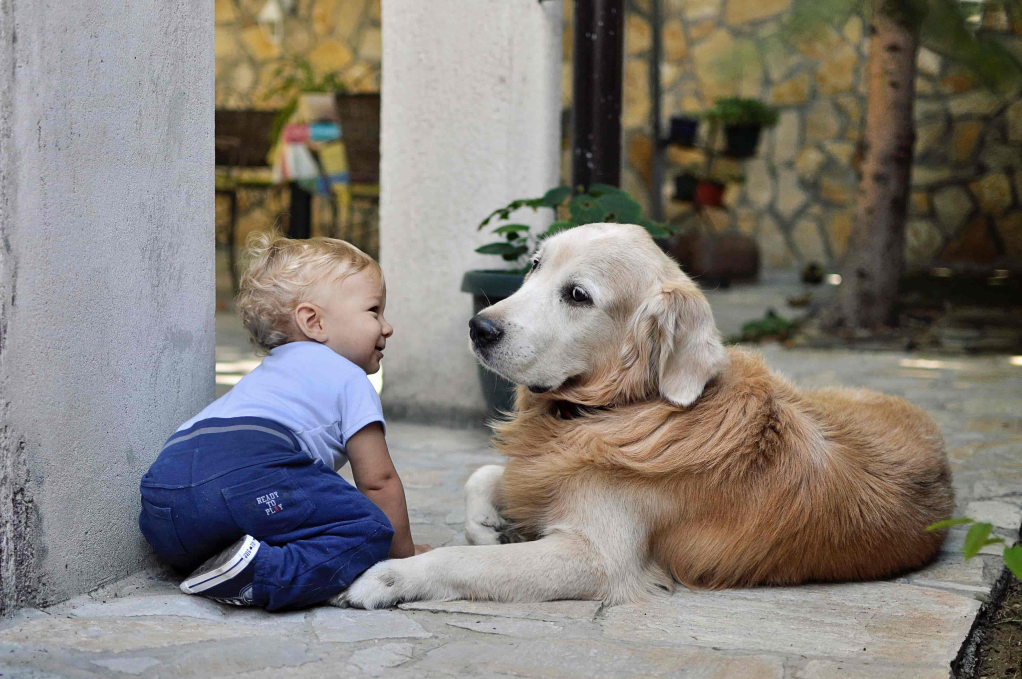 The important role pets play in a child's development