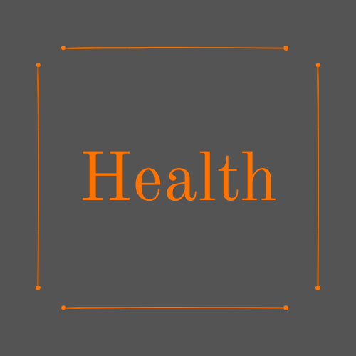 "Dark grey background, with an orange box inside and the word ""Health"" Inside in orange text."