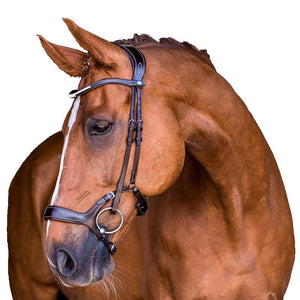 PS of Sweden Bridle