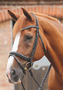 Premier Equine Bellissima Crank Bridle with Diamante Browband