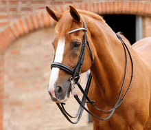 Load image into Gallery viewer, Premier Equine Matteo Leather Grip Reins