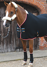 Load image into Gallery viewer, Premier Equine Quick Dry Horse Leg Wraps - Robyn's Tack Room