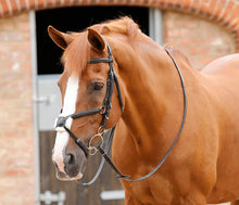 Load image into Gallery viewer, Premier Equine Stefano Rubber Reins