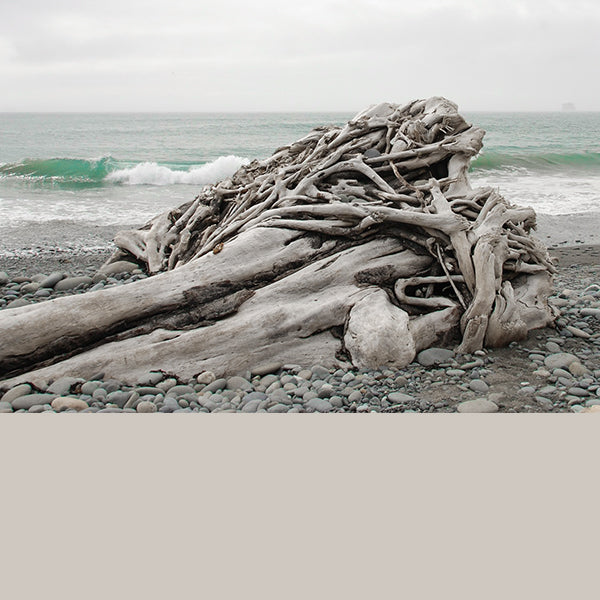 Senses Driftwood Grey