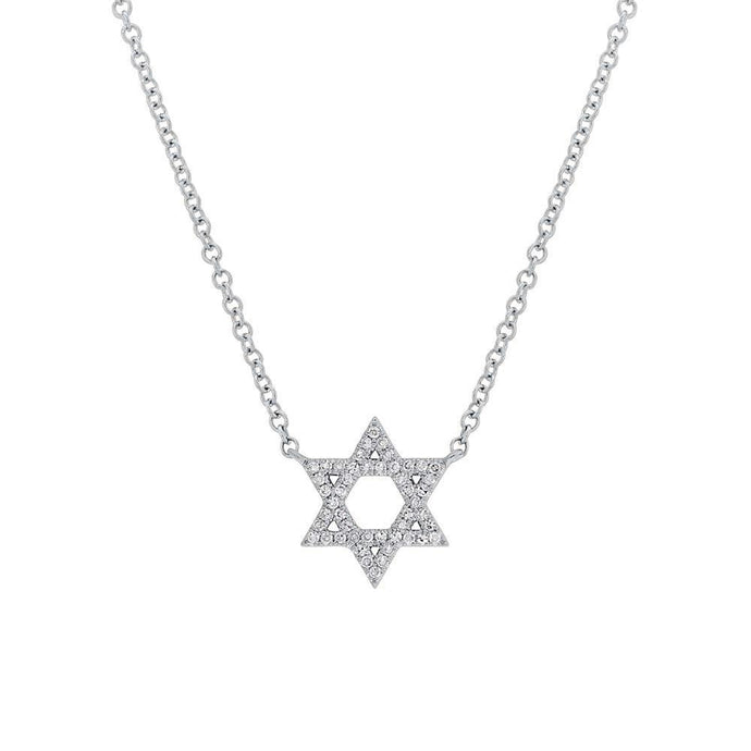14k White Gold Diamond Star of David Necklace