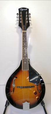 Ozark Acoustic Electric Mandolin