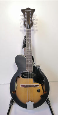 Tanglewood Acoustic Electric Mandolin - Cutaway