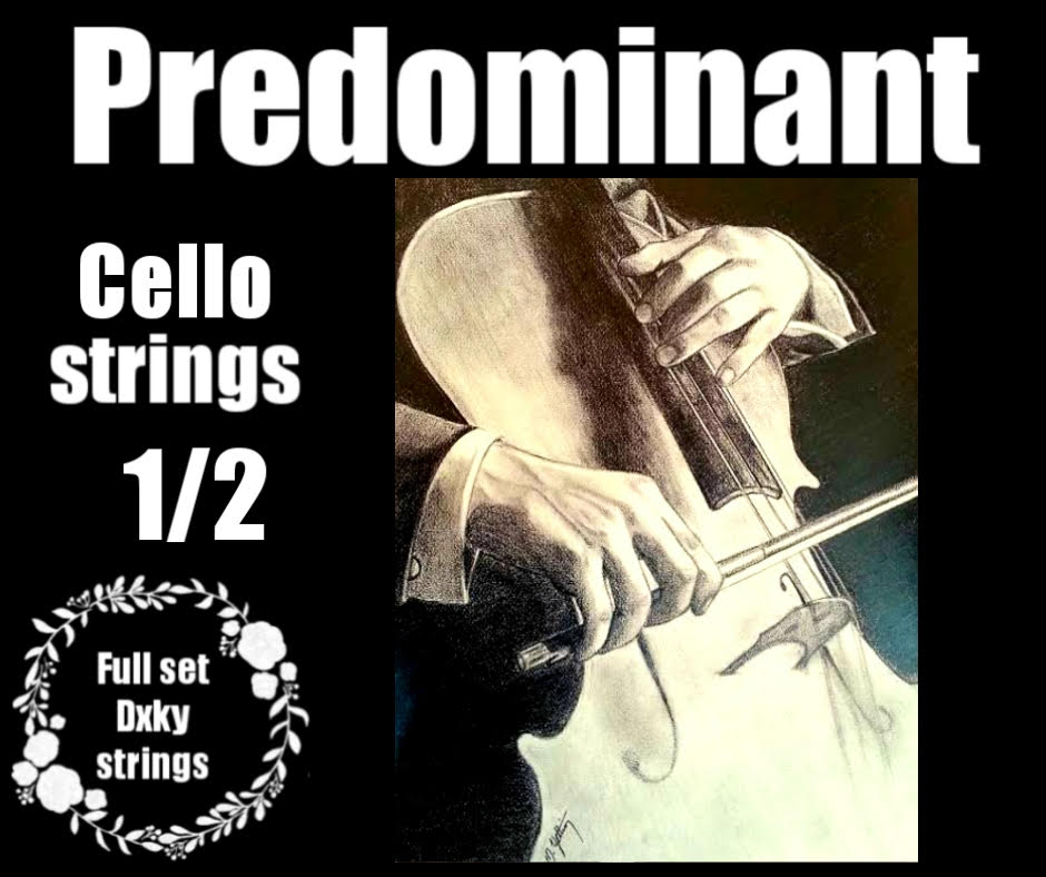 Predominant DXKY 1/2 Cello Strings