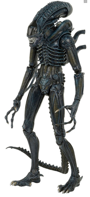 Aliens Warrior - 1/4 Scale Figure - Limited Edition - NECA