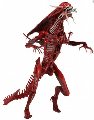 "Alien Red Genocide Queen - 30"" Scale Replica - Limited Edition - NECA"