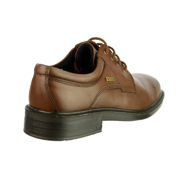 Brown - Back - Cotswold Sudeley Mens Waterproof Shoe - Mens Shoes